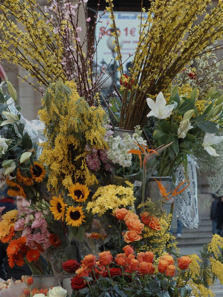 Milan (Italy) - Flowers sold on the street