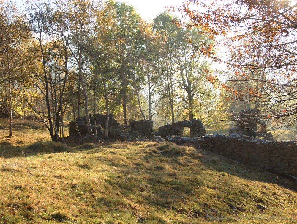 Piaro (Biella, Italy) - Clearing against the light in autumn