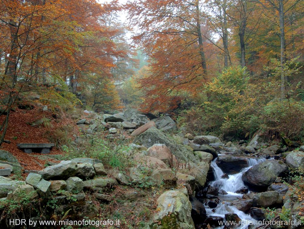 Sanctuary of Oropa (Biella, Italy) - Autumn woods