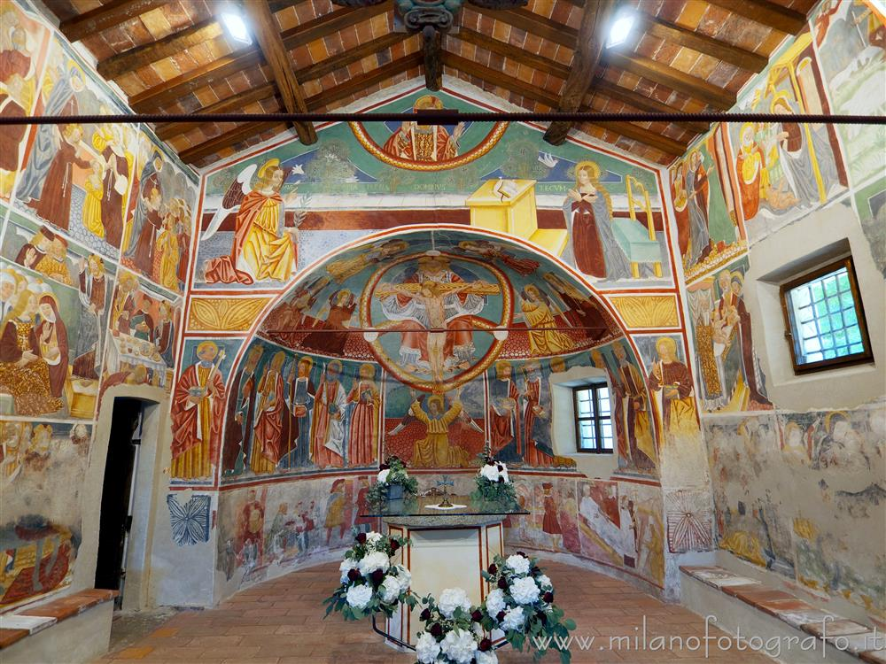 Momo (Novara, Italy) - Apse and first span of the nave of the Oratory of the Holy Trinity