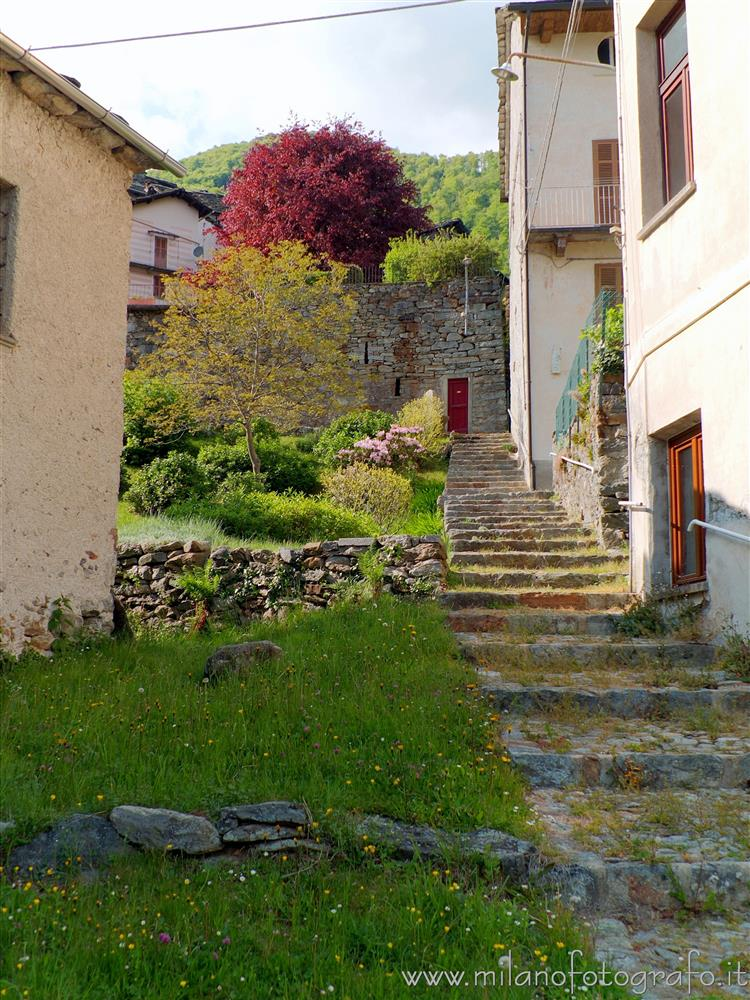 Montesinaro fraction of Piedicavallo (Biella, Italy) - Spring colors in the village