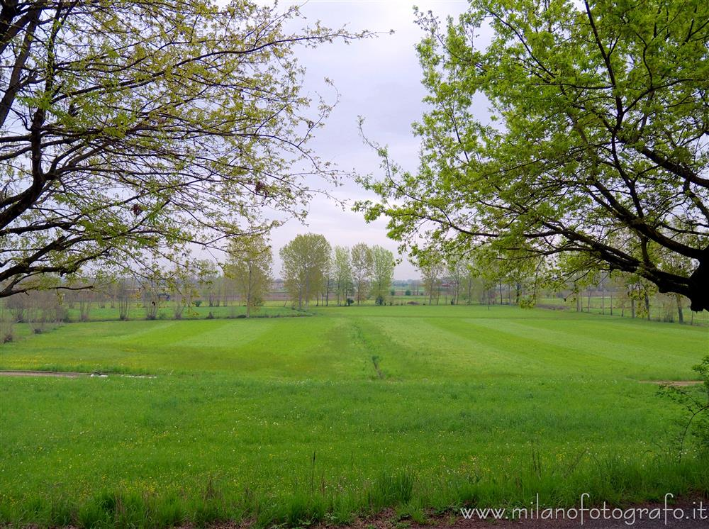 Soncino (Cremona, Italy) - Spring countryside