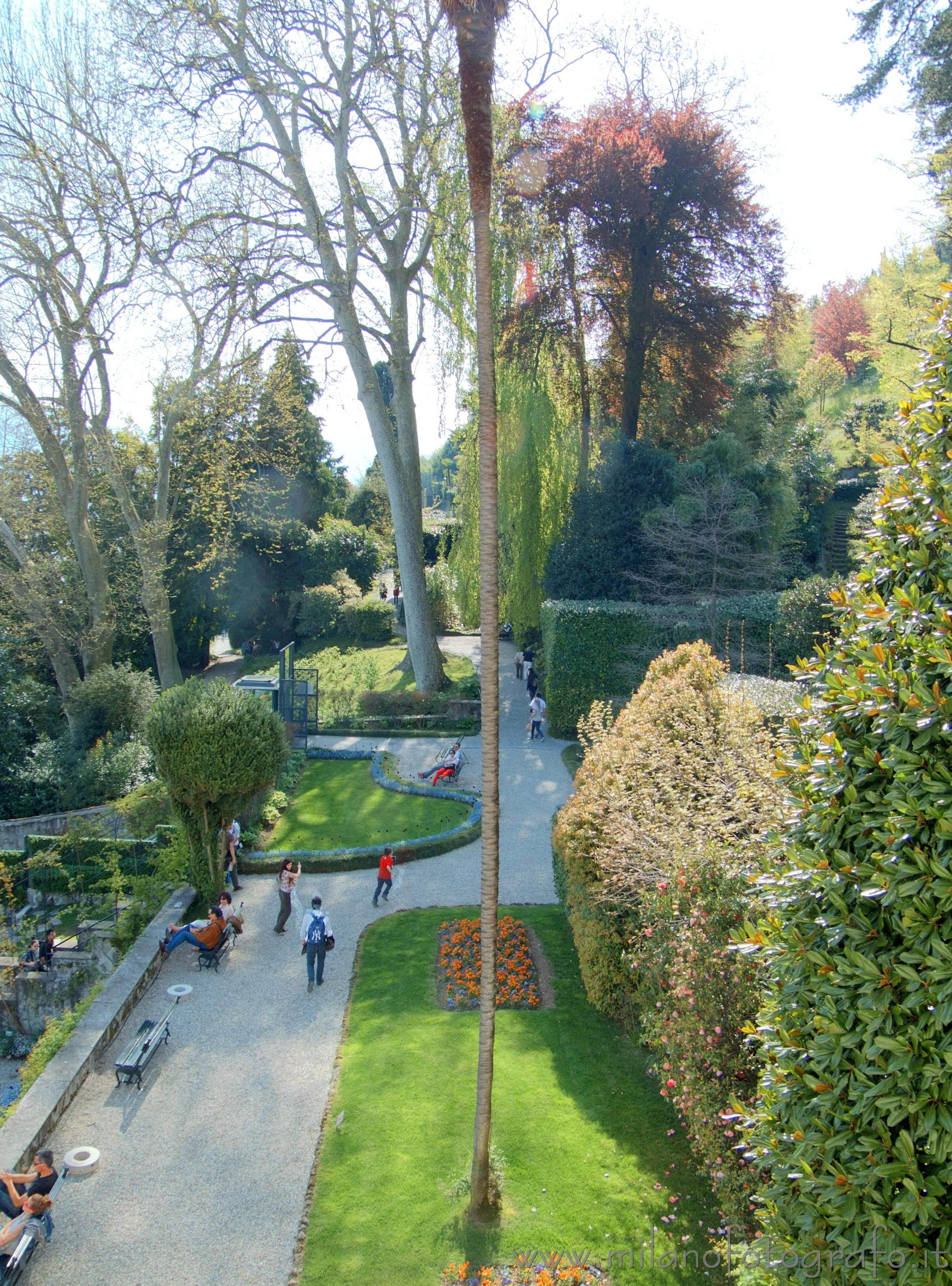 Tremezzo (Como, Italy): Park of Villa Carlotta from one of its balconies - Tremezzo (Como, Italy)